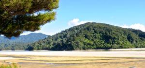 Nieuw-Zeelanders kopen paradijselijk gebied