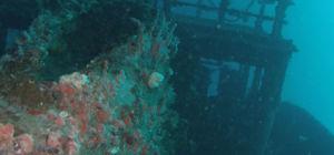 Nieuw onderwatermuseum in Florida