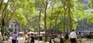 Ondergronds park in New York goedgekeurd