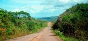Boeren in Guatemala krijgen geld voor bomen