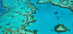 Nieuw rif ontdekt in Australië
