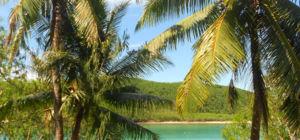 Fiji gaat volledig over op duurzame energie