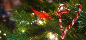 Vijf vreemde gewoontes tijdens de feestdagen