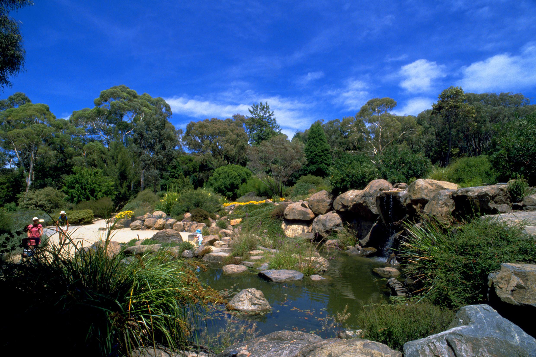 решили сделать австралийский национальный ботанический сад фото москвы также