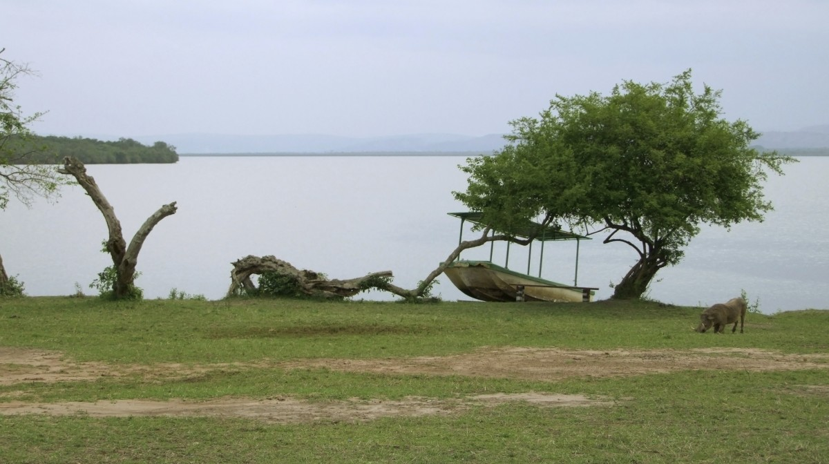Image result for lake mburo