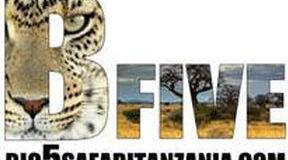 Big 5 Safari Tanzania