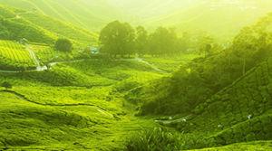 Ontvang de leukste Maleisië reisroutes