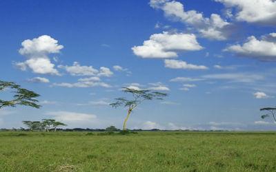 Rondreis Kenia & Tanzania lodge/hotel