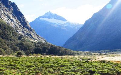Bed & Breakfast tour Nieuw-Zeeland met huurauto