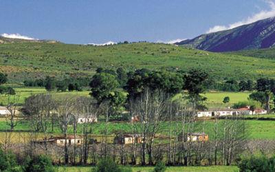 Kaapstad, Olifanten en Wijnregio