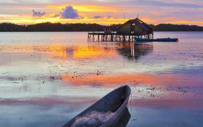 Bali's dieren, natuur en stranden