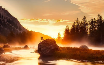 Fly drive Canadian Rockies en Yellowstone