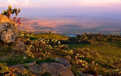 Groepsrondreis Grand Tour Zuid-Afrika