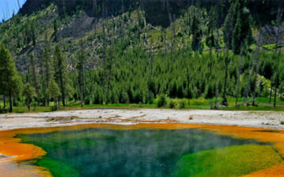 Grand Tour Zuidwest Amerika en Yellowstone